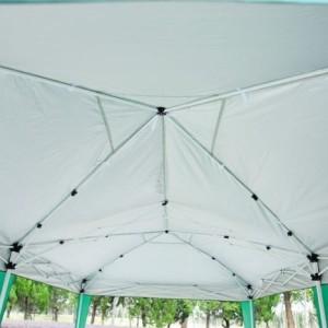 10 x 20 Pop Up Canopy Gazebo Green 3