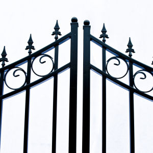 Moscow Style Dual Swing Steel Driveway Gate Image 3