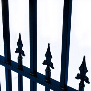 St Petersberg Style Dual Swing Steel Driveway Gate Image 8